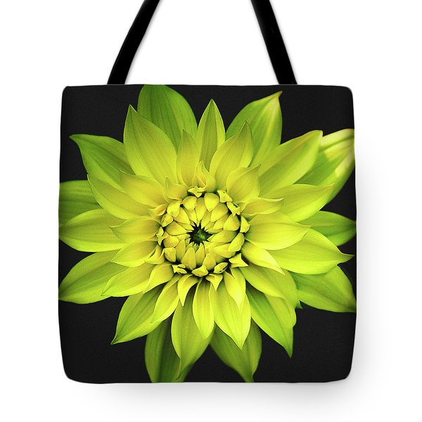 Tote Bag featuring the photograph Dahlia In Yellow by Julie Palencia