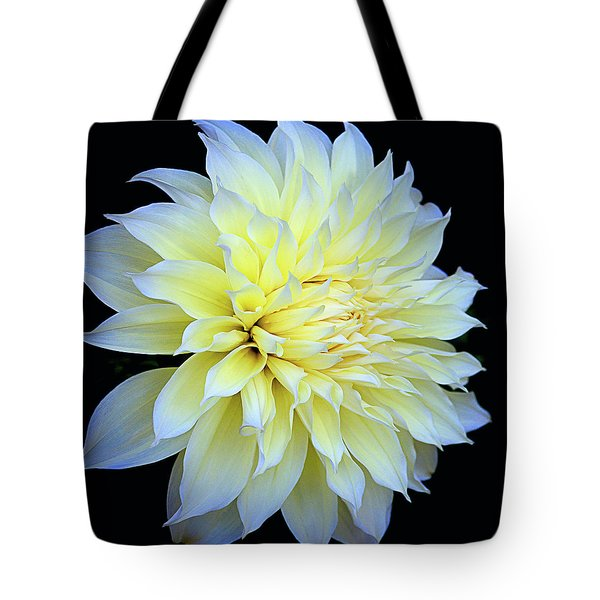 Tote Bag featuring the photograph Dahlia Kelvin Floodlight by Julie Palencia