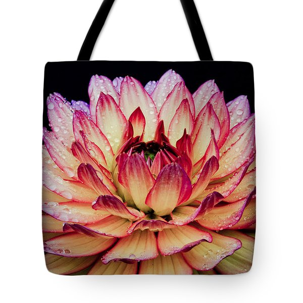 Dahlia Macro Tote Bag by Nick  Boren