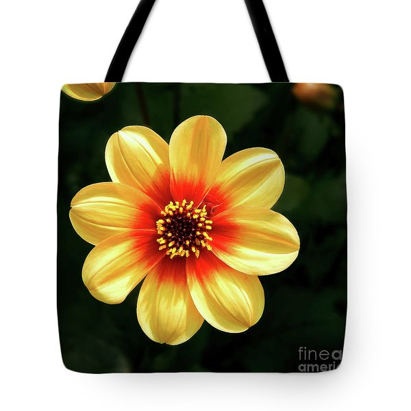 Dahlias Flower - Yellow Tones Tote Bag