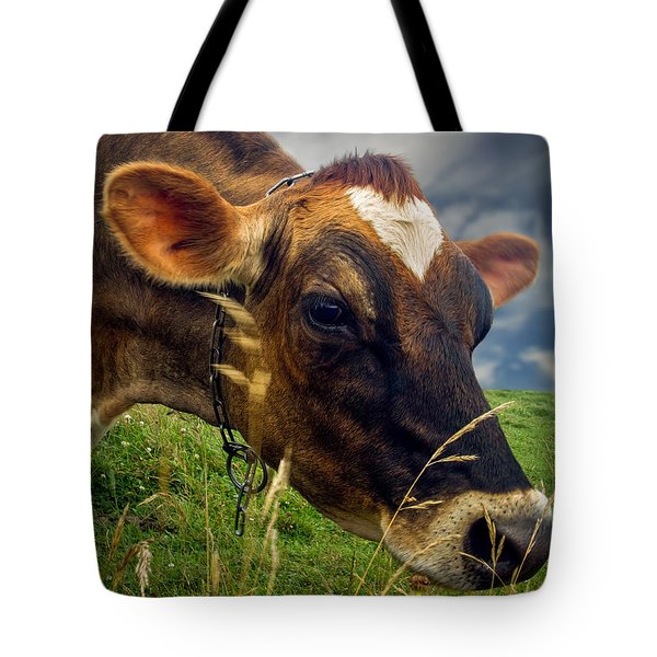 Dairy Cow Eating Grass Tote Bag by Bob Orsillo