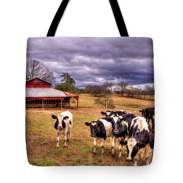 Dairy Heifer Groupies The Red Barn Dairy Farming Art Tote Bag