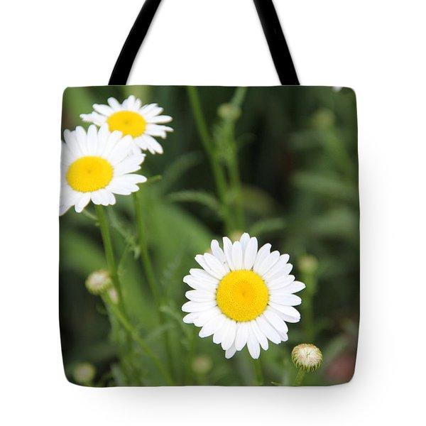 Daisies Tote Bag