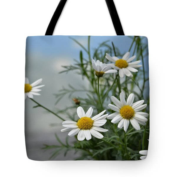 Daisies By The Lake Tote Bag by Ann Bridges