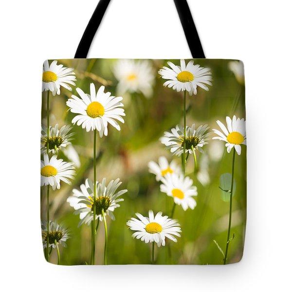 Daisies Galore 2014-1 Tote Bag