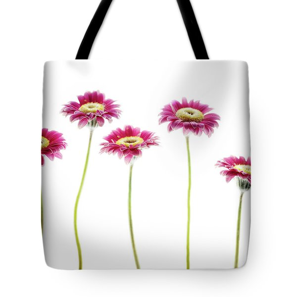 Tote Bag featuring the photograph Daisies In A Row by Rebecca Cozart