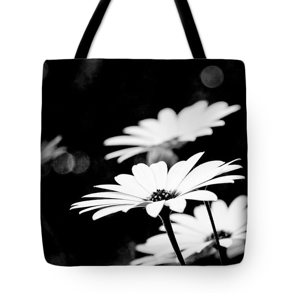 Daisies In Black And White Tote Bag