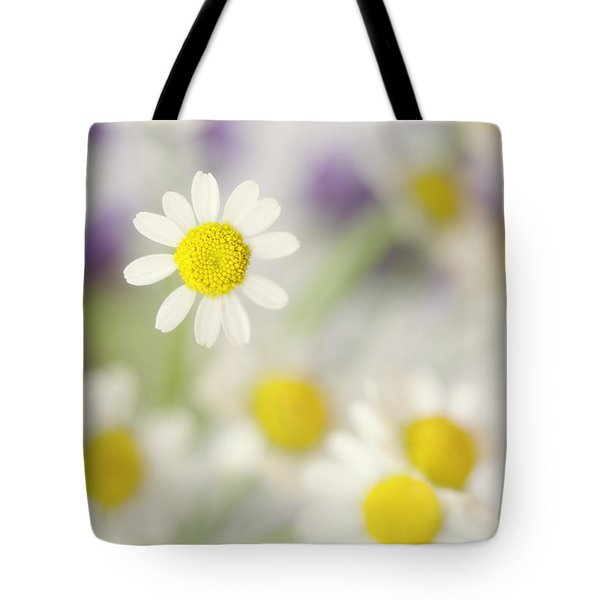Daisies In Morning Mist Tote Bag