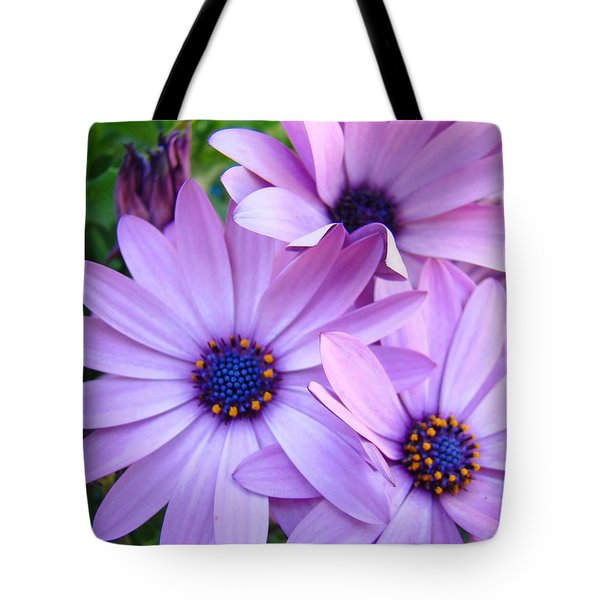 Daisies Lavender Purple Daisy Flowers Baslee Troutman Tote Bag by Baslee Troutman