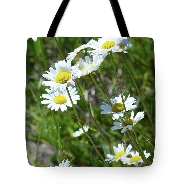 Tote Bag featuring the photograph Daisies Popping Up Everywhere by Sally Sperry