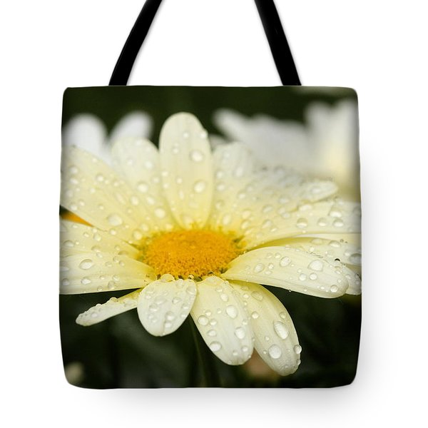 Tote Bag featuring the photograph Daisy After Shower by Angela Rath