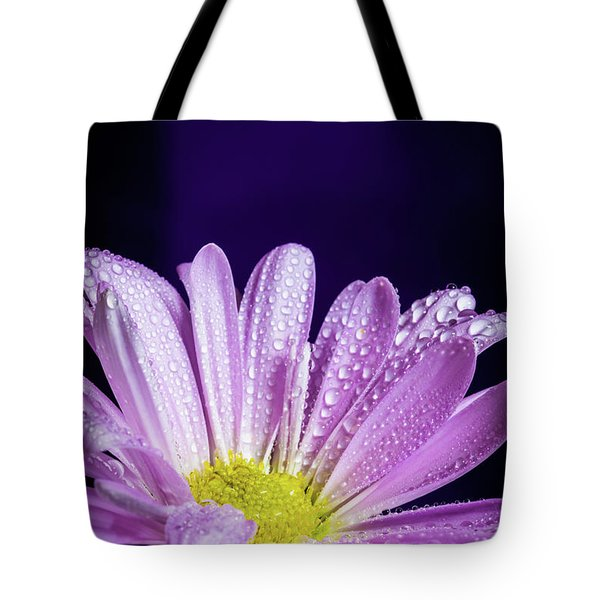 Daisy After The Rain Tote Bag