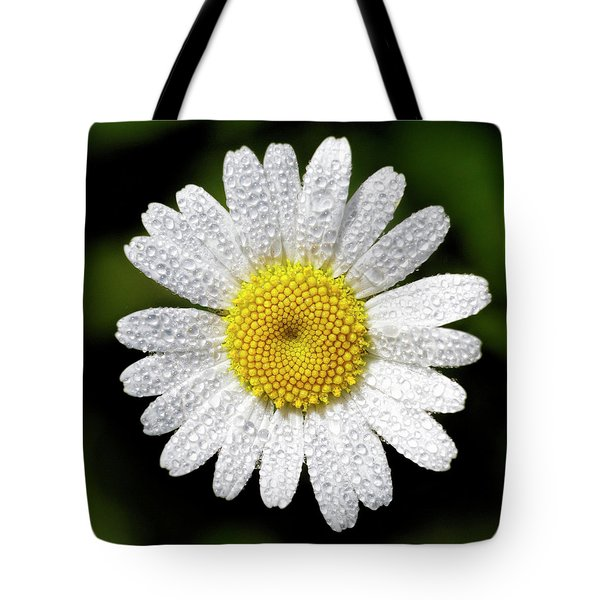Tote Bag featuring the photograph Daisy And Dew by Rob Graham
