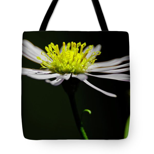 Daisy Center Stage Tote Bag