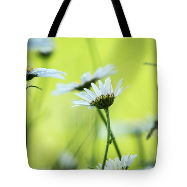 Daisy Collection  Tote Bag