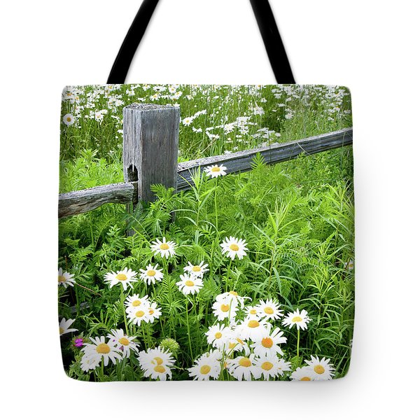 Daisy Fence Tote Bag by Susan Cole Kelly