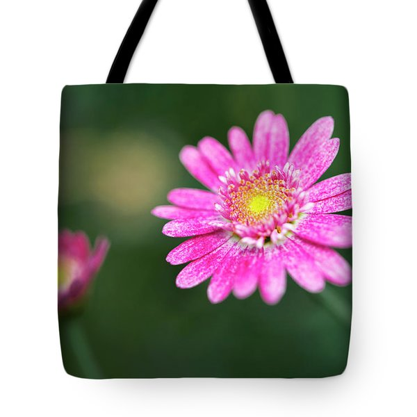 Tote Bag featuring the photograph Daisy Flower by Pradeep Raja Prints