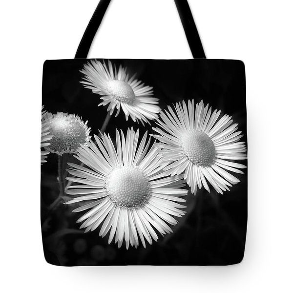 Tote Bag featuring the photograph Daisy Flowers Black And White by Christina Rollo