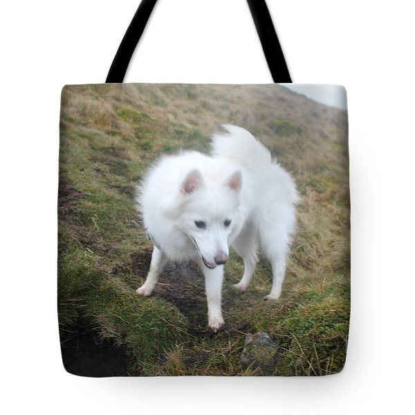 Tote Bag featuring the photograph Daisy - Japanees Spits by David Grant