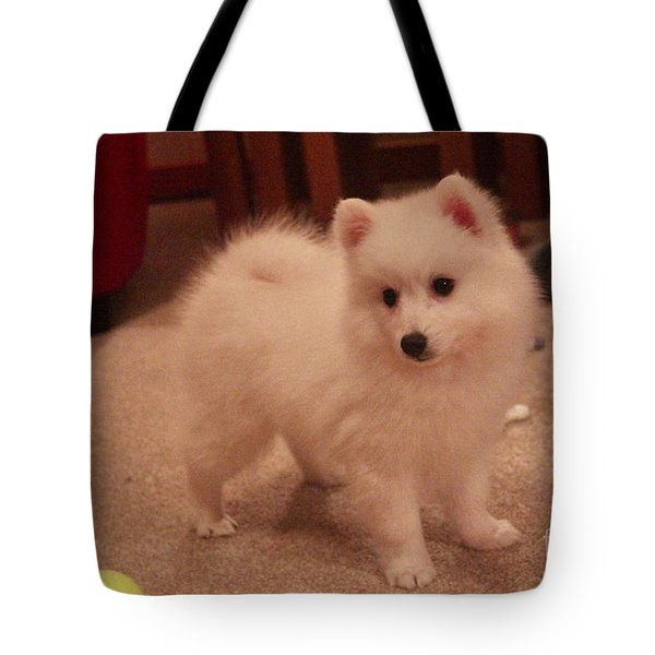 Daisy - Japanese Spitz Tote Bag by David Grant