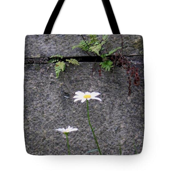 Daisy Loves Fern Tote Bag