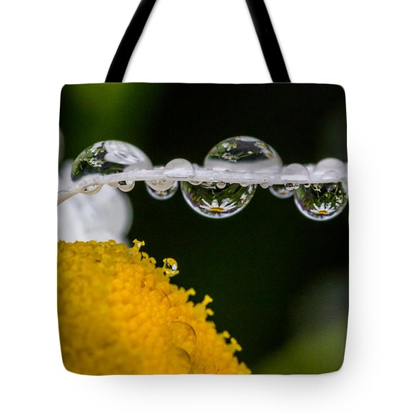 Daisy Reflections Tote Bag by Darleen Stry