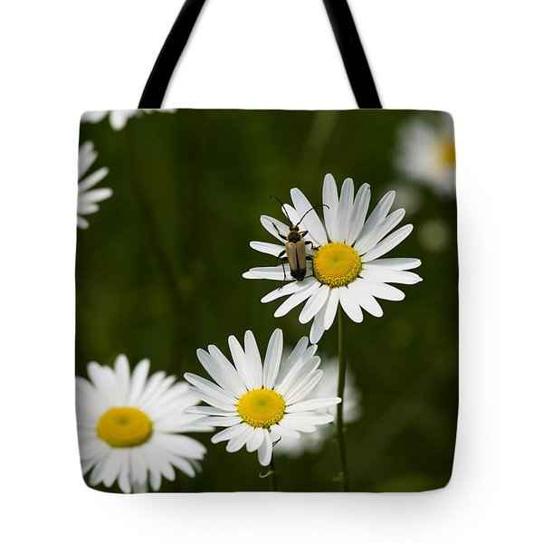 Daisy Visitor Tote Bag