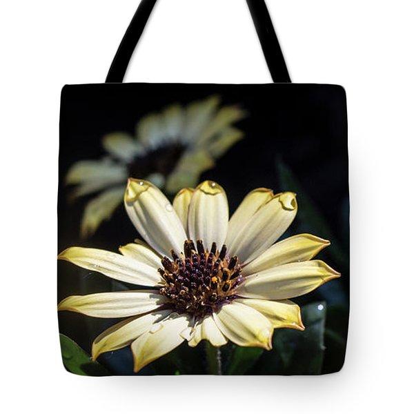 Daisydrops Tote Bag