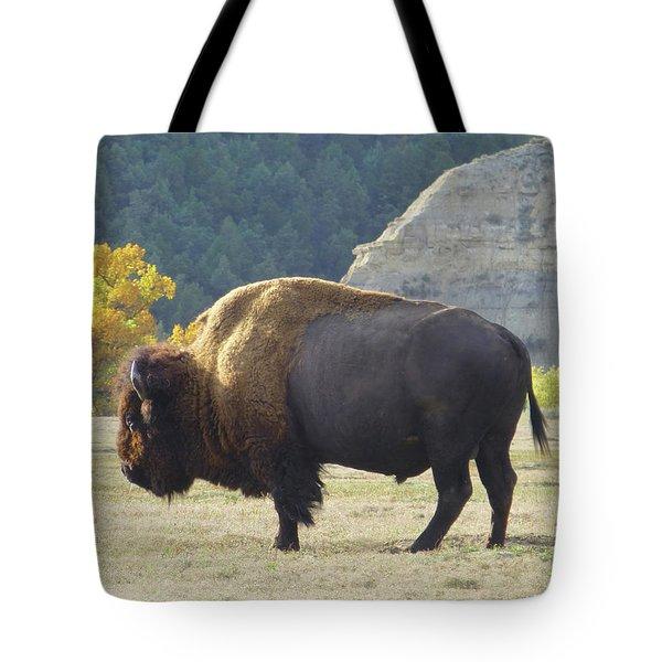 Dakota Badlands Majesty Tote Bag
