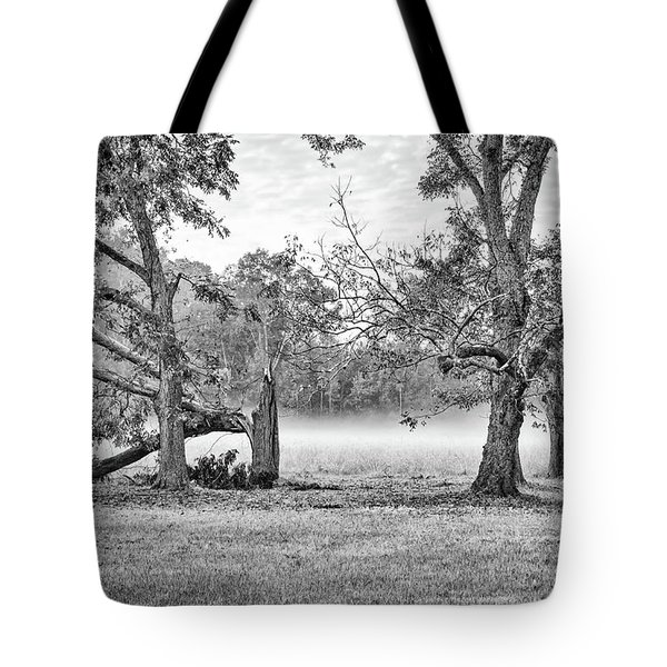 Dale - Foggy Morning Tote Bag
