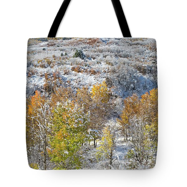 Dallas Divide In October Tote Bag