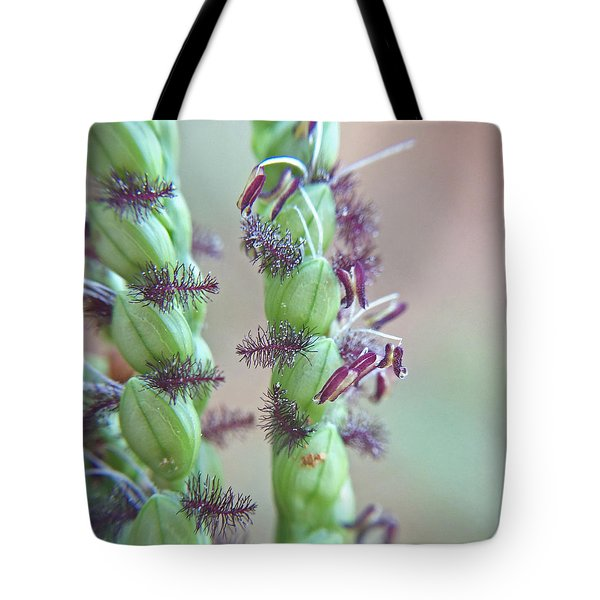 Tote Bag featuring the photograph Dallisgrass Flowering Seed Head Macro by Robyn Stacey