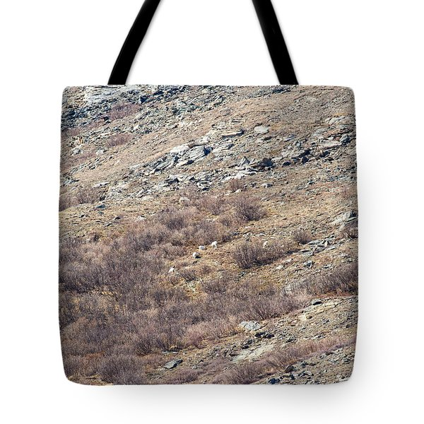 Dalls Sheep Tote Bag by Allan Levin