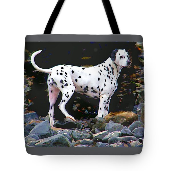 Dalmatian On The Rocks Tote Bag