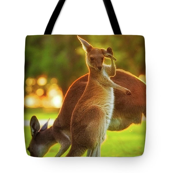 Tote Bag featuring the photograph Damn Flies, Yanchep National Park by Dave Catley