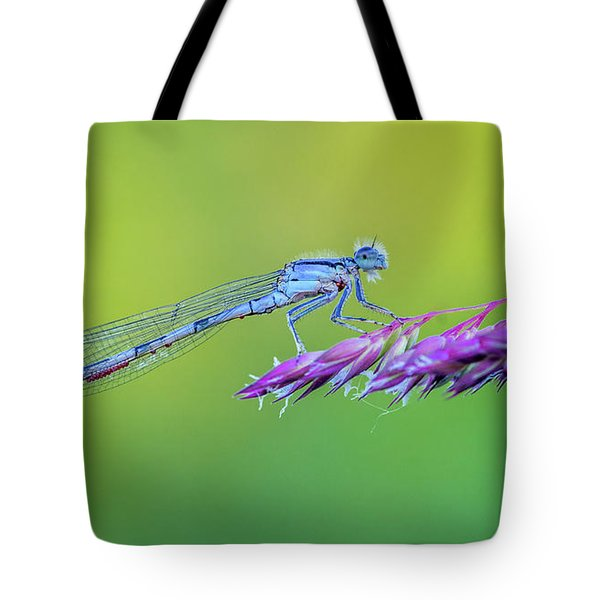 Damsel In No Stress Tote Bag