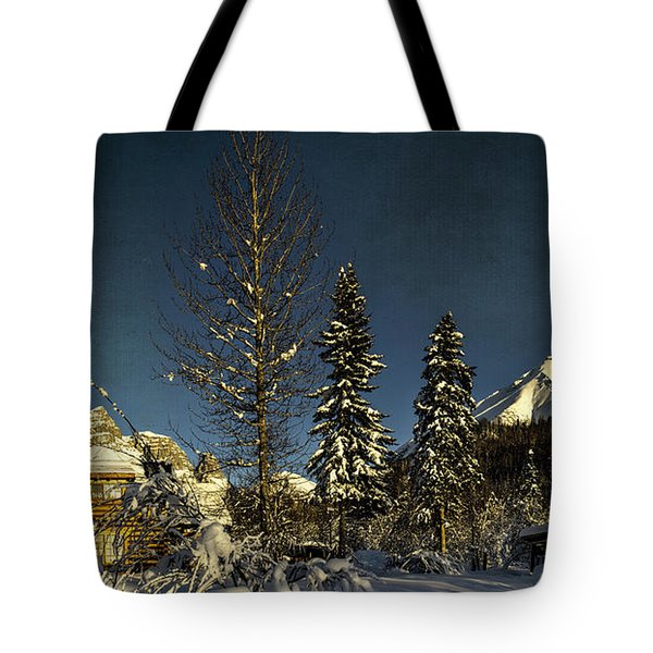 Dan Creek Cabin Feb. 2014 Tote Bag