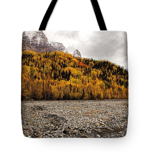 Dan Creek Color Tote Bag