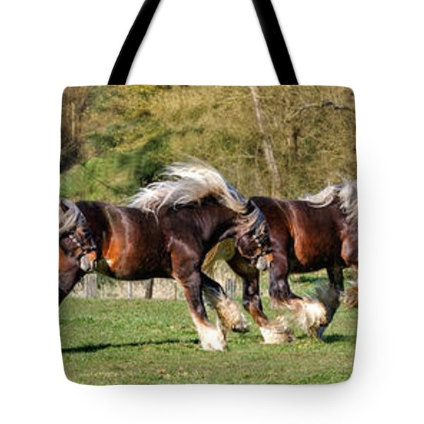 Dance Of The Gypsy Tote Bag