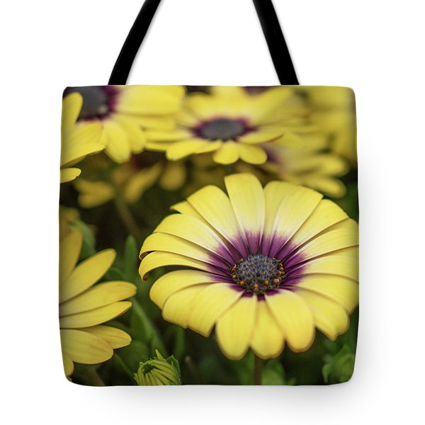Dance With Daisies Tote Bag