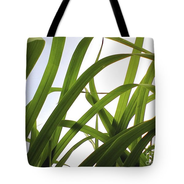 Tote Bag featuring the photograph Dancing Bamboo by Rebecca Harman