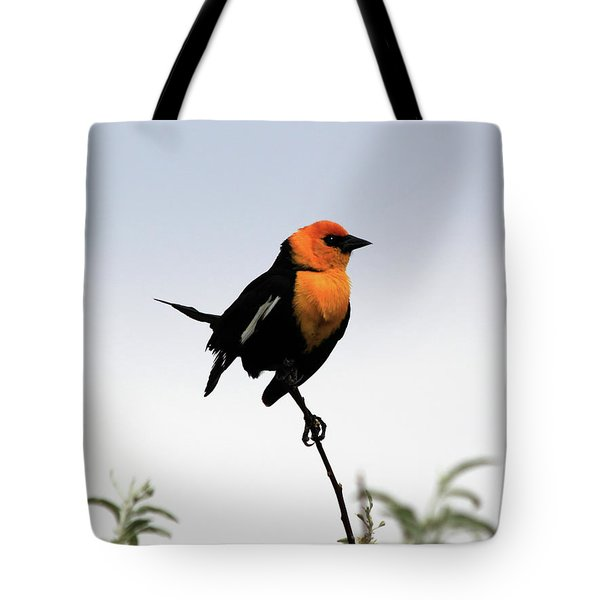 Tote Bag featuring the photograph Dancing Blackbird by Shane Bechler