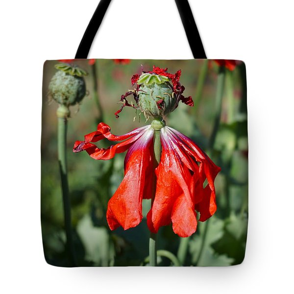 Dancing Gal Tote Bag