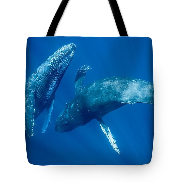 Dancing Humpback Whales Tote Bag by Flip Nicklin