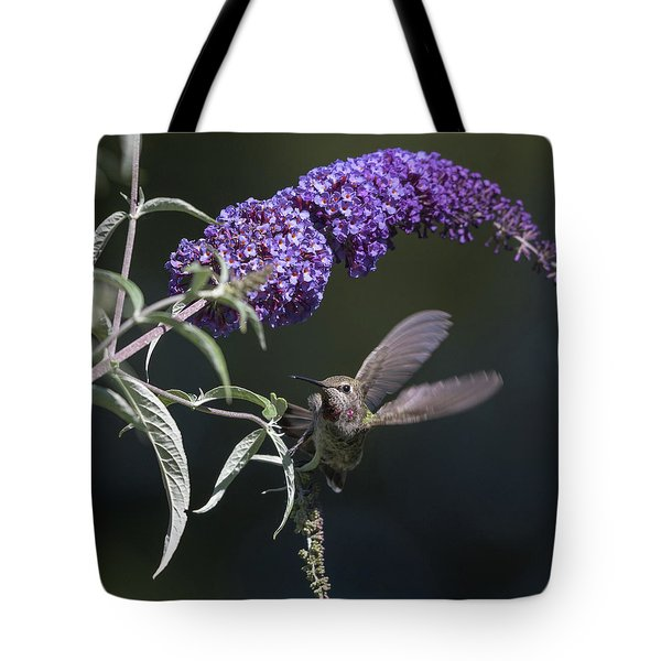 Tote Bag featuring the photograph Dancing In The Butterfly Bush by Angie Vogel