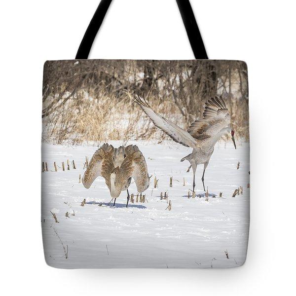 Dancing Sandhill Cranes 2016-1 Tote Bag