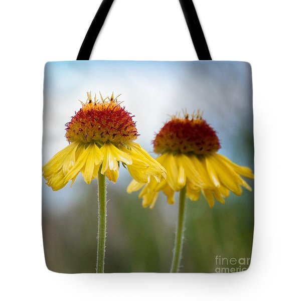 Dancing Twirling Tote Bag