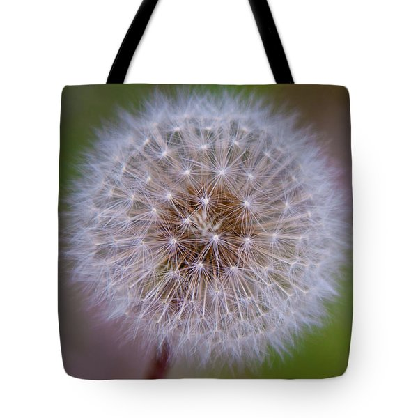 Tote Bag featuring the photograph Dandelion by April Reppucci