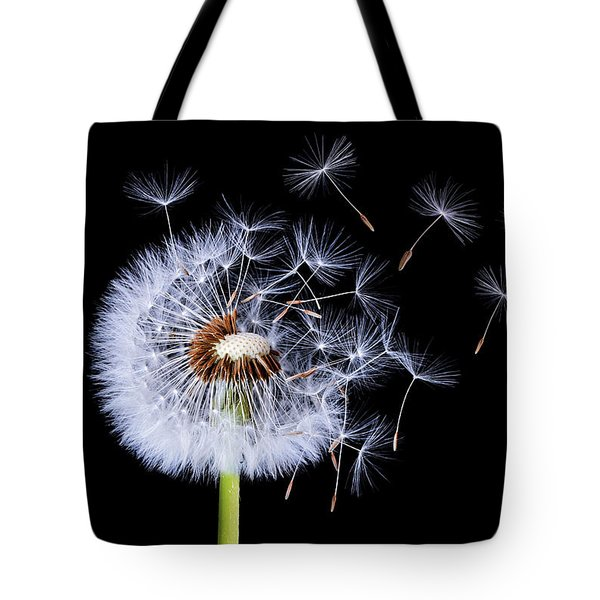 Dandelion Blowing On Black Background Tote Bag by Bess Hamiti