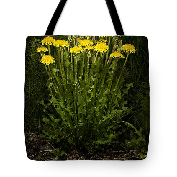 Dandelion Clump Tote Bag